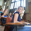 Stock Photo: University Students in Lectuer Hall