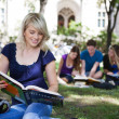 Stock Photo: Students reading books