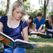 Stock Photo: Students studying in campus