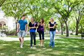 Grupo de estudantes universitários — Foto Stock