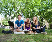 Teenagers studying on campus lawn — Stock Photo