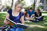 Students studying in campus — Stock Photo