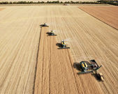 Aerial View of Harvesters in Formation — Stock Photo