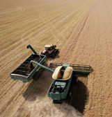 Combine and Grain Cart — Stock Photo