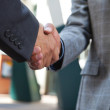 Business shaking hands — Stock Photo #7359620