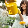 Attractive Female Watering Plants - Stock Photo