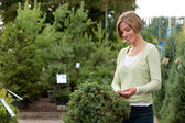 Attractive female purchasing shrub — Stockfoto