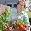 Senior woman holding basket full of vegetables — Stock Photo