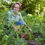 Senior Woman in Garden — Stock Photo