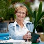 Senior Woman Working — Stock Photo