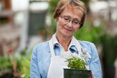 Senior woman holding potted plant — Stock Photo