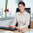 Female Entrepreneur Working On Computer - Stock Photo