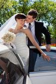 Affectionate wedding couple — Stock Photo