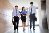 Businesspeople Walking In Office Corridor — Stock Photo