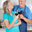 Senior Couple Toasting Wine — Stock Photo