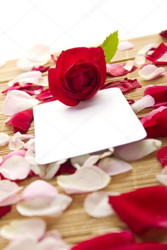 At the rose petals is white piece of paper and a red rose. Postcard — Zdjęcie stockowe #7212822