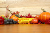 Autumn Setting — Stock Photo