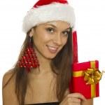 Santa Portrait — Stock Photo #7563640