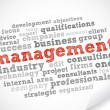 Management tag cloud - Stock Vector