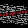 Stock Vector: Management word cloud