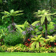 Gardens in park — Stock Photo #6861767