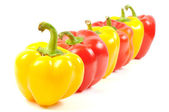 Paprika peppers — Stock Photo