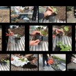 Collage gardening — Stock Photo