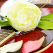 Romantic love concept - white rose on red guitar, background — Stock Photo