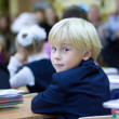 Foto Stock: Back in school - boy in classroom