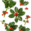 Christmas holly set - green leaf, red berry and twig — Stock Photo #7363948