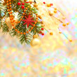 christmas background with blurred winter snow bokeh — Stock Photo