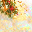 Stock Photo: Christmas background with blurred winter snow bokeh