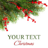 Christmas background with Xmas green fir tree — Stock Photo