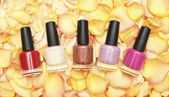 Nail polish in rose petals - beauty background — Stockfoto