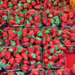 Strawberry fruit background — Stok fotoğraf