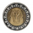 The Egyptian coin — Stock Photo