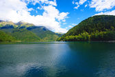 Mountain lake Ritsa — Stock Photo