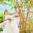 Tropical wedding — Stock Photo #6807235