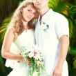 boda tropical — Foto de Stock   #6866458