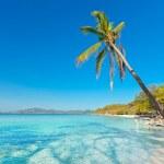 Tropical beach Malcapuya — Stock Photo