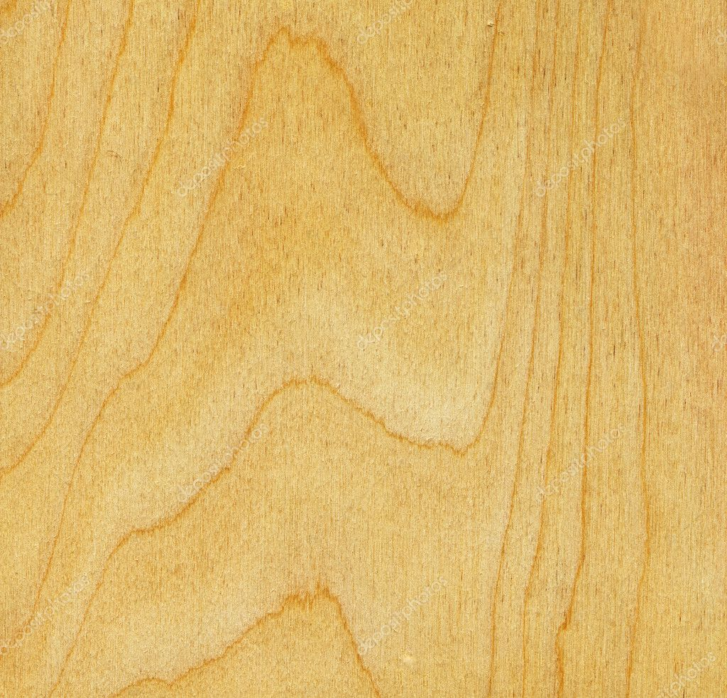 Birch wood texture stock photo auriso 7321940 for Birch wood cost