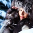 Beauty woman in the winter scenery - Stock Photo