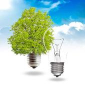 Concept d'énergie verte — Photo