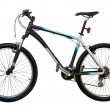 Постер, плакат: Mountain bicycle bike