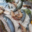 Stock Photo: Frozen fresh fish and shrimp
