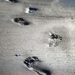 Human footprints — Stock Photo