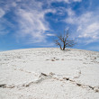 White salt desert under blue sky with clouds — Stock Photo