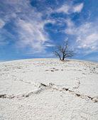 Bílé solné poušti pod modrou oblohu s mraky — Stock fotografie