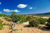 Utah state manzarası. abd — Stok fotoğraf