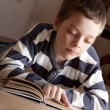 Stock Photo: Boy reeding book